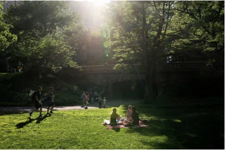 Picture taken in Central Park. Even in cities, nature provides health benefits… and happiness.